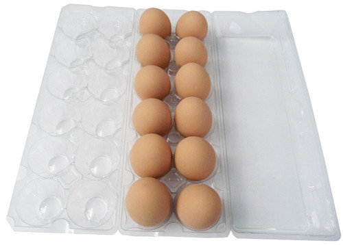 Clear Plastic Tri-fold Jumbo Egg Cartons filled with brown eggs