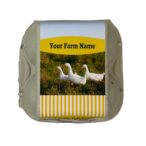 4-Egg iMagic Custom Carton Label - Ducks & Eggs