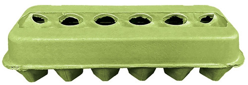 Lime Green Tinted Carton back view