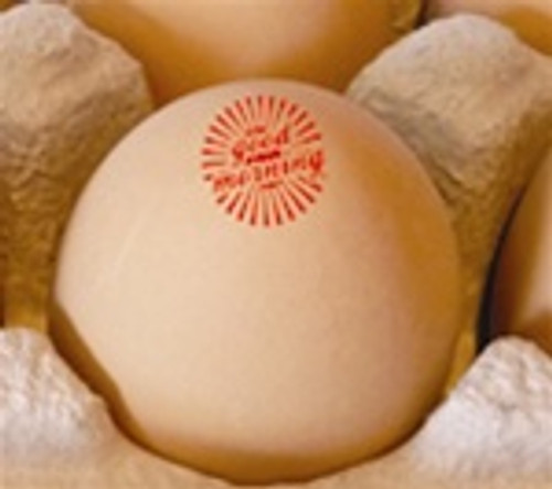 Brown egg in paper pulp carton with good morning sunburst egg stamp