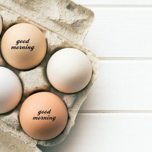 good morning egg stamp lifestyle image