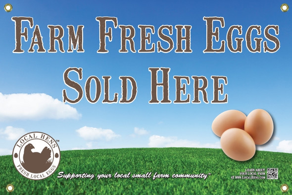 Front view of local hens eggs and grass banner