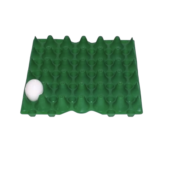 30 egg plastic tray in green