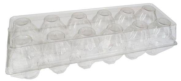 Clear Plastic Tri-fold Jumbo Egg Cartons