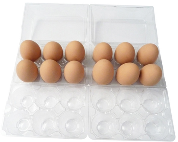 Top view of two standard Cell Split 6-Egg Clear Plastic Carton filled with brown eggs and positioned side by side