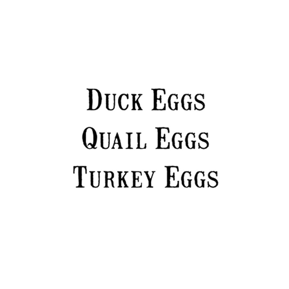 Duck eggs Quail Eggs Turkey Eggs