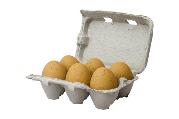 Six speckled brown fake ceramic nest eggs in a brown paper pulp carton with a white background.