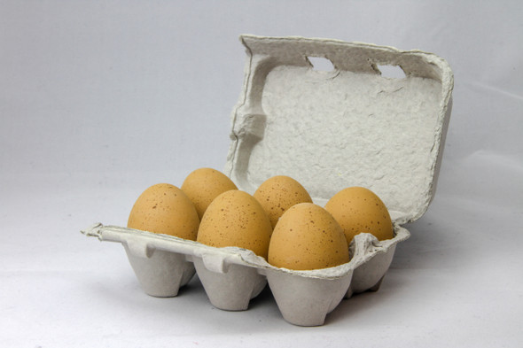 Six speckled brown fake ceramic nest eggs in a brown paper pulp carton with a grey background.