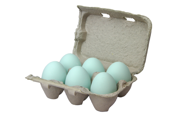 Six teal ceramic nest eggs in a brown paper pulp carton with white background