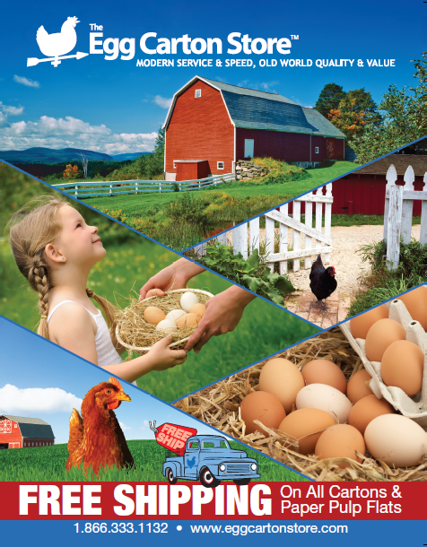 the-egg-carton-store-catalog.png