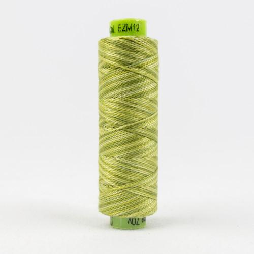 Inchworm, Sue Spargo Eleganza perle 8 cotton, Available from Purple Stitches, Hampshire UK