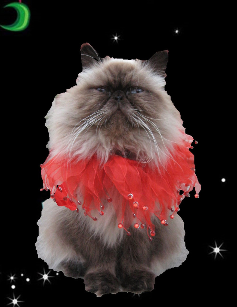 Red Crystal Party Collar