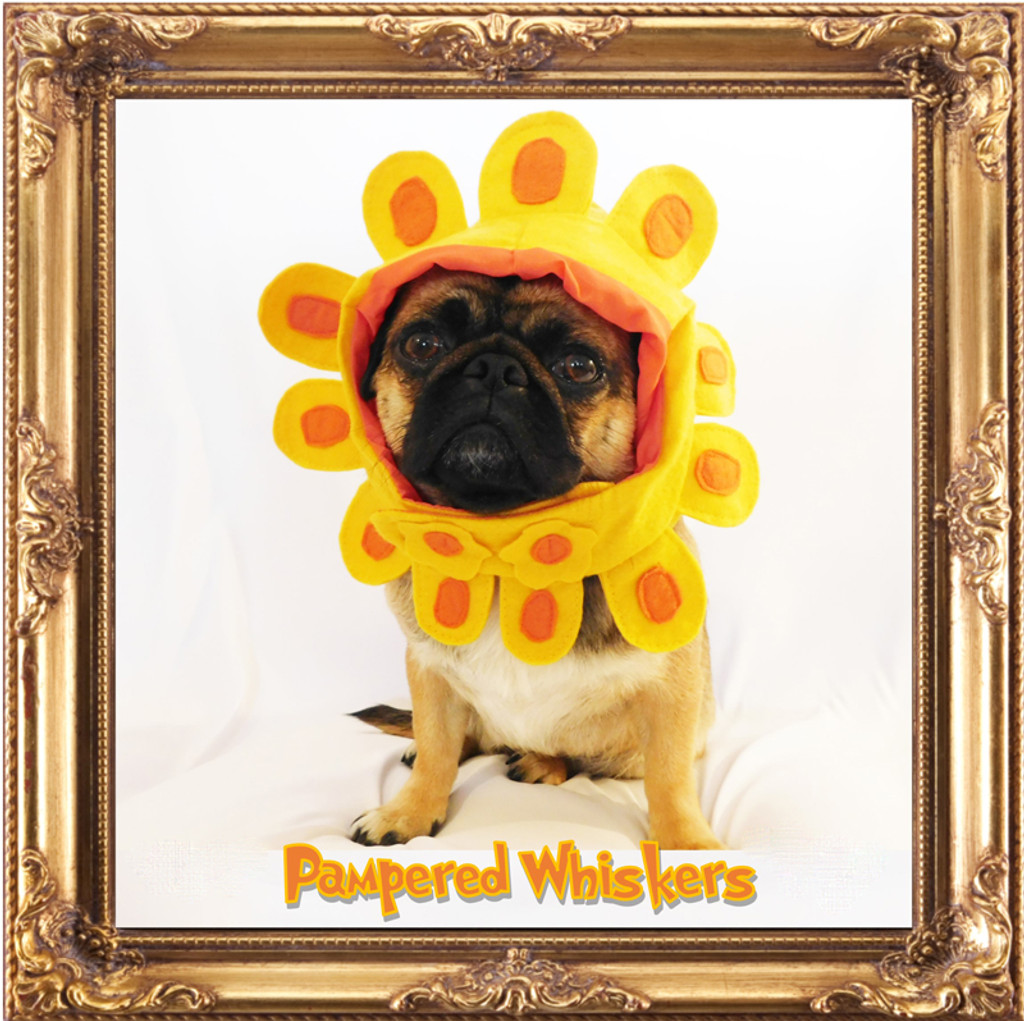 Dog Flower Costume