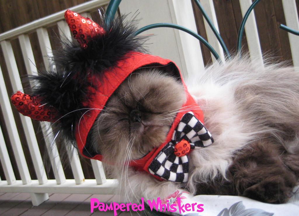 Devil Hat for Cat