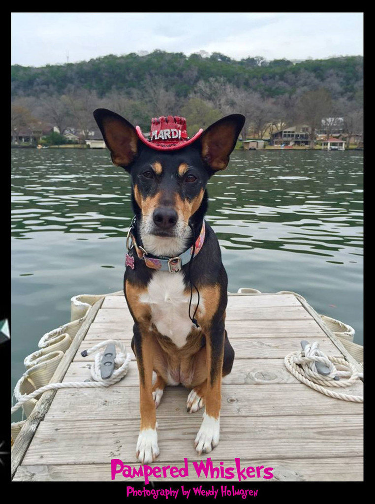 red personalized cowboy hat for dogs