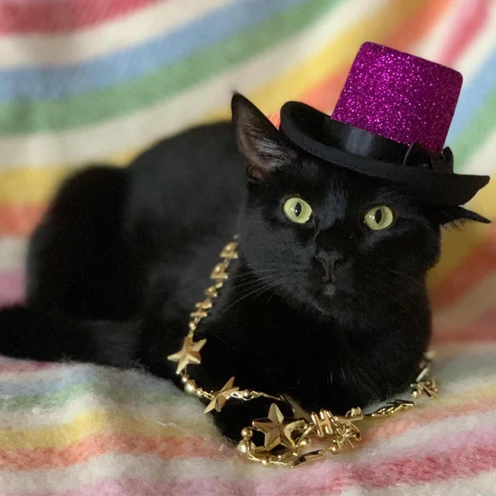 Fuchsia Glitzy Aristocrat Top Hat for dogs and cats