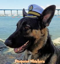 Large Dog Captain Hat
