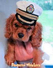 Dog Naval Cap