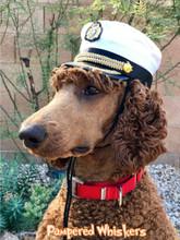 Extra Large Dog Captain hat
