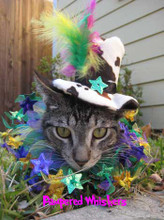 Mad Hatter cat hat