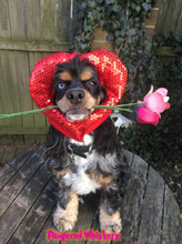 Dog Heart hat