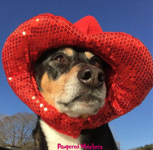 Dog Valentine Hoodie