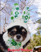 Bunny hat for dogs and cats