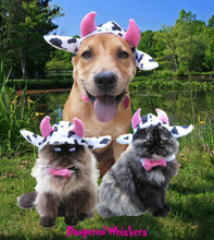 cow costume for dogs and cats