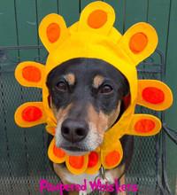 Dog Sunflower Hat