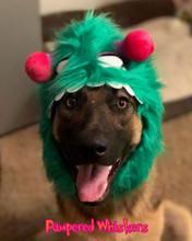Dog Monster Hat