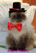 The  Aristocrat Top Hat & Bow Tie