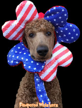 Make America Great Again dog hat - The Patriot patriotic hat for dogs and cats