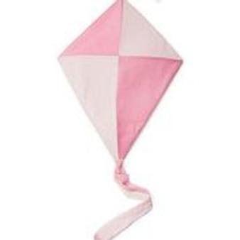 Pink Kite