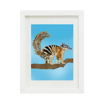 Numbat (8x10 inches)