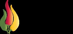 Chilisauser Logo