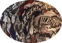 Sweet Home Texas Hydro Dipped Hard Hats Cap Style Design - Ratchet Liner ~ Graphic Detail