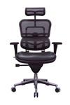 Eurotech Black Leather and Mesh Ergohuman Office Chair LEM4ERG