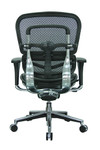 Eurotech Black Leather Ergohuman Mesh Low Back Chair LEM6ERGLO