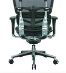 Eurotech Black Leather Ergohuman Mesh Low Back Chair LEM6ERGLO