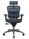 Eurotech Ergohuman Mesh Back Office Chair ME7ERG