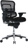 ergohuman mesh chair with fabric seat
