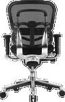 ergohuman mesh chair with fabric seat - back