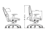 ignite chair dimensions