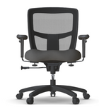 friant zone classic chair