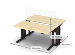 Friant My-Hite Sit To Stand 2 User Workstation FMH-2001