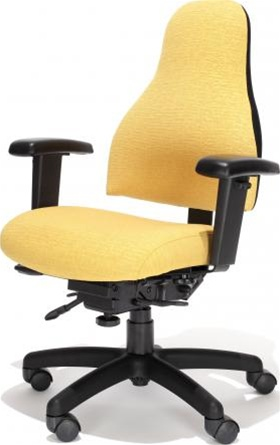 RFM Preferred Seating Carmel Ergonomic Office Chair 8215