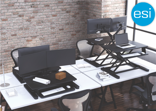 ESI S2S Sit To Stand Desktop Convertor