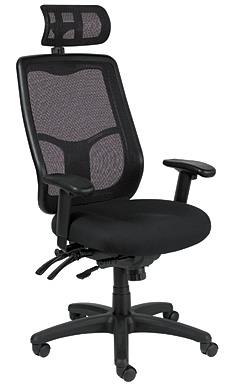 Eurotech Seating Apollo Ergonomic Office Chair with Headrest