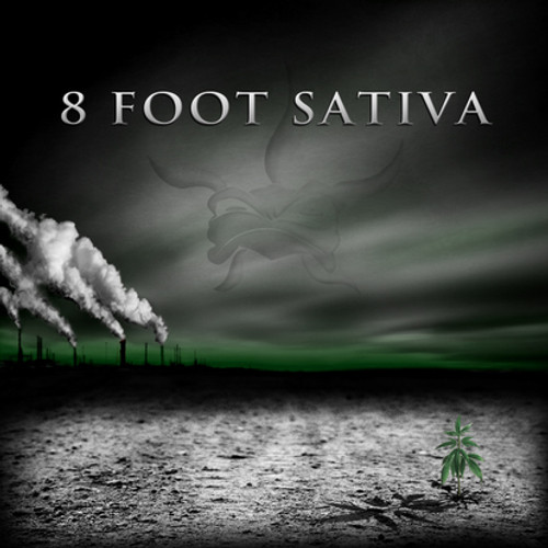 8 Foot Sativa - The Shadow Masters - CD *NEW*