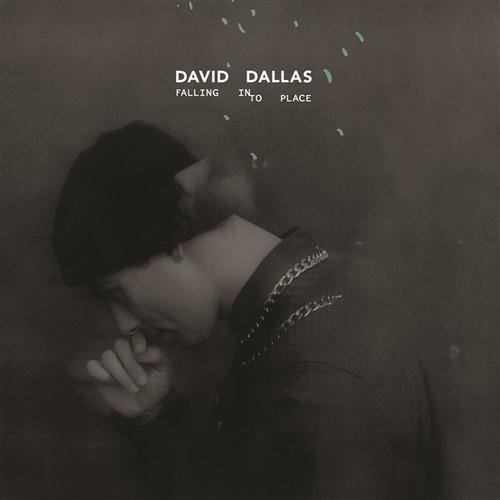 David Dallas - Falling Into Place - CD *NEW*